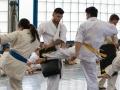 Karate-Event -116
