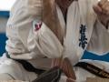 Karate-Event -160