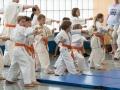 Karate-Event -59