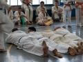 Karate-Event -75