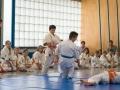 Karate-Event -87