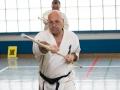 Karate-Event -96