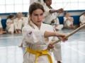 Karate-Event -97