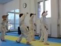 Karate Ebikon Eröffnung 20