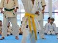 Karate Ebikon Eröffnung 24