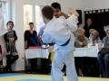 Karate Ebikon Eröffnung 31